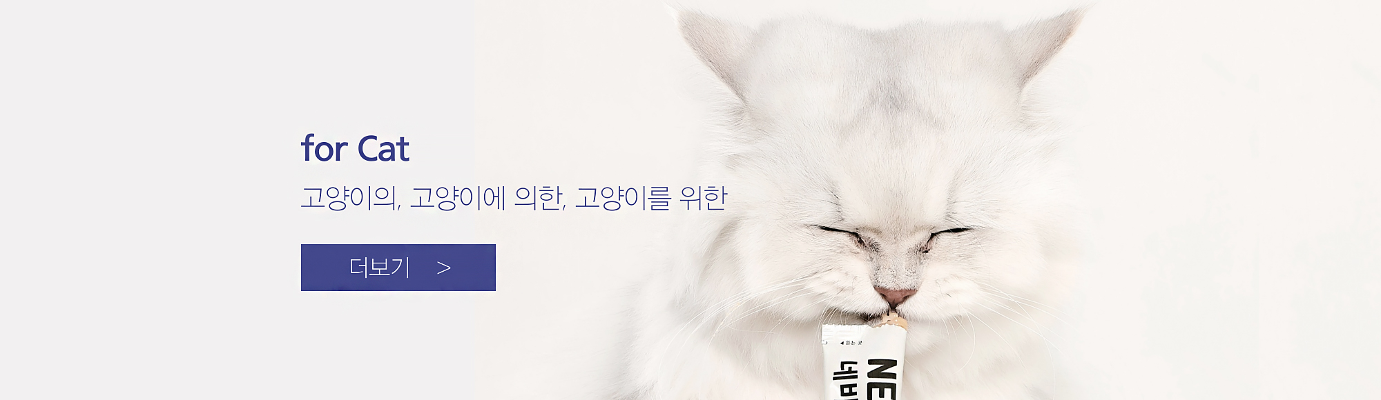 고양이영양제